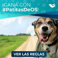PatitasDeOS